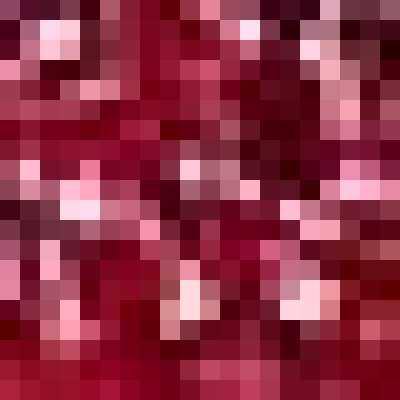Marque Amazon - find. Femme Robe Midi Portefeuille à Fleurs, Rouge (Red), 44, Label: XL
